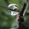 新作「春雨の音」