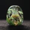 新作「海藻の森」
