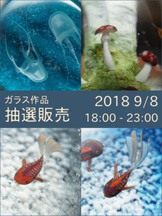 抽選販売(2018, 9/8)