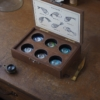 魚石類六種入標本箱(小粒)