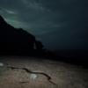 夜の海岸散歩