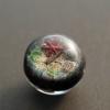 ゴンズイ玉&ビーチグラス..Glass2H