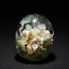 「海藻の森」Glass2H